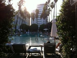 The Delano Hotel in Miami